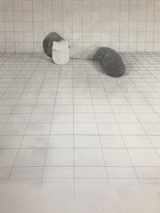 56x69cm